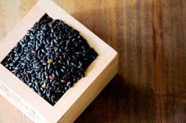 紫黒米(古代米)
